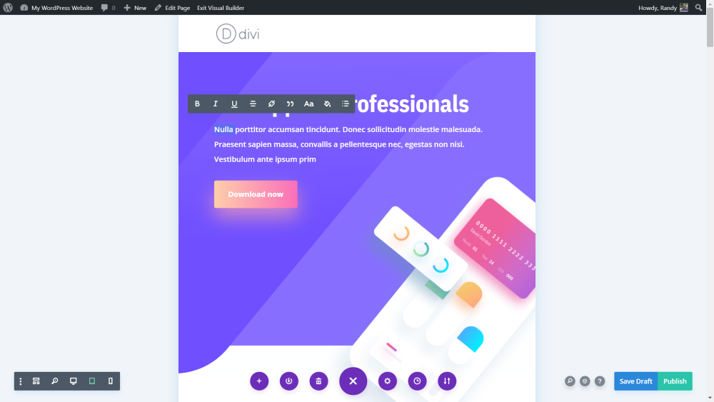 Divi Theme Review (2020) 14
